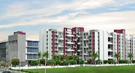 Property in Chakan