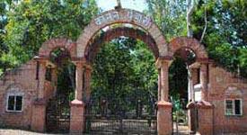 Property in Bilaspur