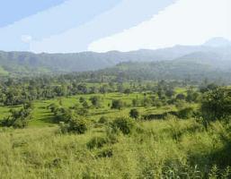 Heritage View