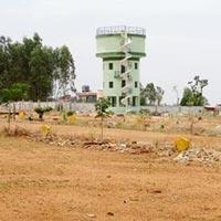 TGS Padmavathi - Bangalore