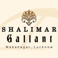 Shalimar Gallant