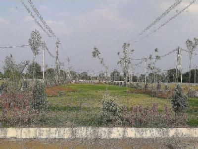 Divya Rock Island, Indore - Residential Apartments