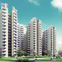 Avenue 71 - Sohna Road, Gurgaon