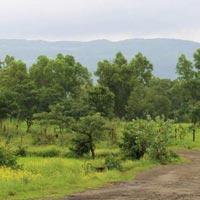 Sairung Serenity - Pune