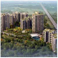 Spaze Privy AT4 - Sector 84, Gurgaon