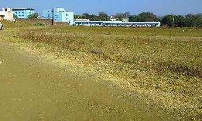 Vishranti City, Zirakpur - Residential Plots