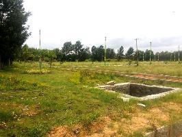 Manani Oak Garden