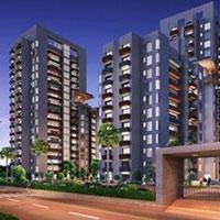 Umang Winter Hills - Gurgaon