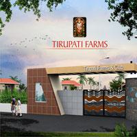 Tirupati Farms - Udaipur