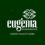 Eugenia Evergreens