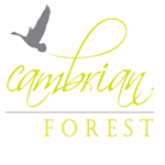SKM Cambrian Forest