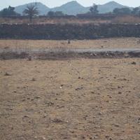 Riddhi Siddhi Phase-10 - Udaipur