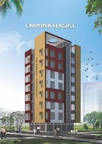 Chandra Seagull