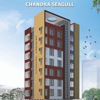 Chandra Seagull - Jamshedpur