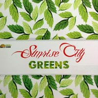 Sunrise City Greens - Sikar