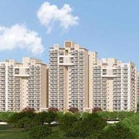 Ashiana Mulberry - Sohna Road, Gurgaon