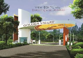 Golden Valley ll
