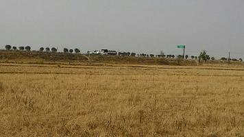 Chandrak Kashiyana
