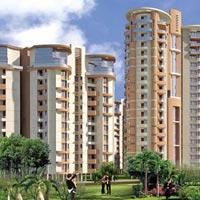 NRI Residency - Greater Noida