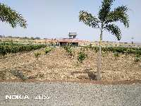 Farm Land for sale in Nashik | Buy/Sell Agricultural Land in