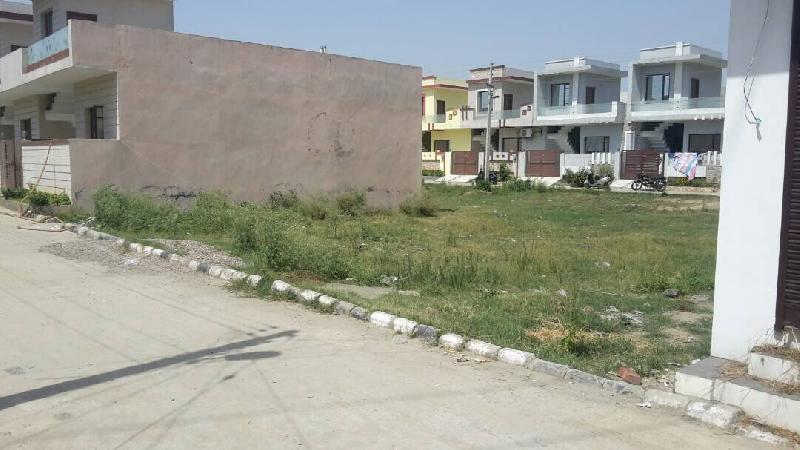 Residential Plot for Sale in Venus Velly Colony, Jalandhar - 1040 Sq. Feet