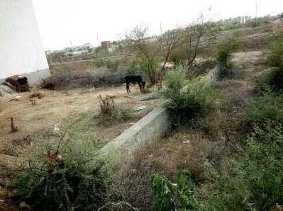 Commercial Lands /Inst. Land for Sale in Jagatpura, Jaipur - 394 Sq. Yards