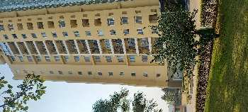 4 BHK 4250 Sq.ft. Residential Apartment for Sale in Delta III, Greater Noida