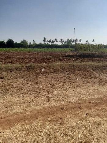 2 Acre Farm Land for Sale in Kupwad Road, Sangli
