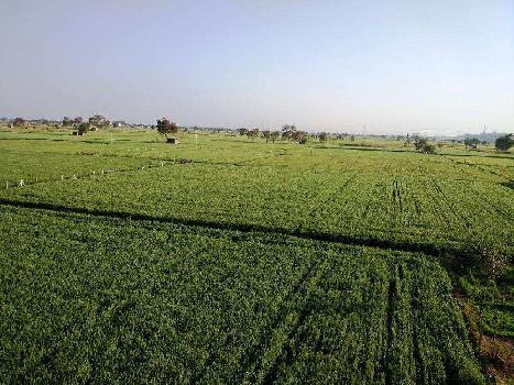 10 Acre Farm Land for Rent in Sohna Road, Gurgaon