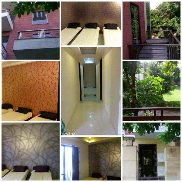 1 BHK Individual House/Home for Pg in Sushant Lok 1, Gurgaon - 6000 Sq. Feet
