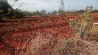6 Acre Farm Land for Sale in Tenkasi, Tirunelveli