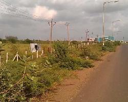 6 Acre Farm Land for Sale in Ankleshwar Gidc, Ankleshwar