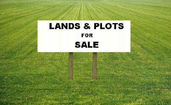 821 Sq.ft. Residential Plot for Sale in Dadar East, Mumbai