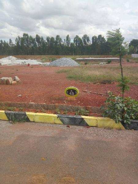 Residential Plot for Sale in Devanahalli, Bangalore - 1200 Sq. Feet