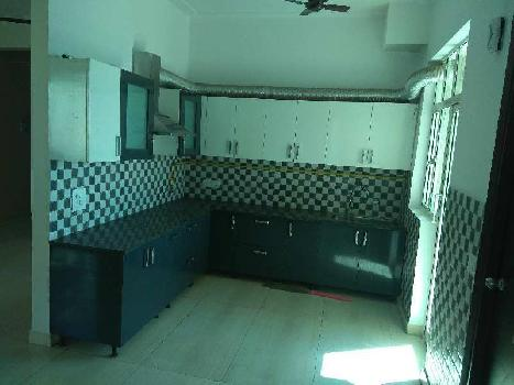 3 BHK 1650 Sq.ft. Residential Apartment for Rent in Techzone 4, Greater Noida West