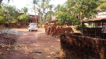 13 Cent Residential Plot for Sale in Payyannur, Kannur