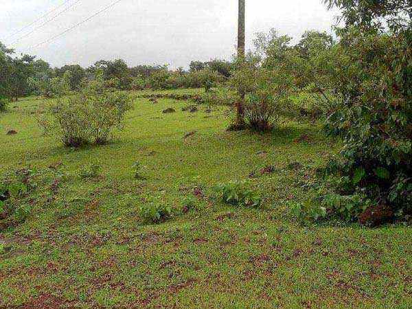 Industrial Land / Plot for Sale in Roha Ashtami, Raigad - 13 Acre