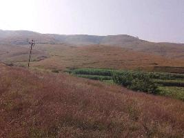 Farm Land for sale in Kolhapur | Buy/Sell Agricultural Farm Land in