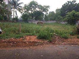 7022 Sq.ft. Residential Plot for Sale in KK Nagar, Tiruchirappalli