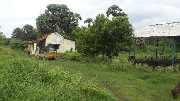 4 Acre Farm Land for Sale in Kozhinjampara, Palakkad
