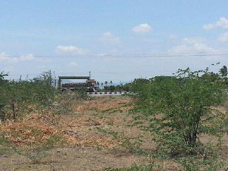 5 Acre Farm Land for Sale in Kattukottai, Salem