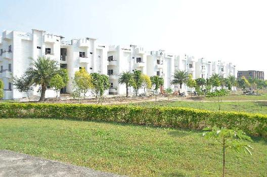 1 BHK 600 Sq.ft. Residential Apartment for Sale in Shyampur, Haridwar