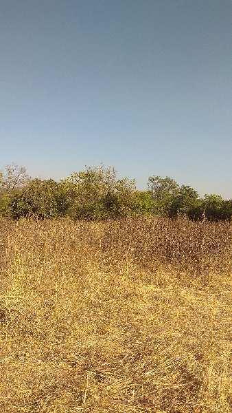 20000 Sq.ft. Residential Plot for Sale in Khadakwasla, Pune