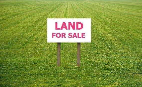 54000 Sq.ft. Farm Land for Sale in VIP Road, Raipur