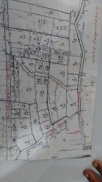 Farm Land for Sale in Kariapatti, Madurai - 16 Acre