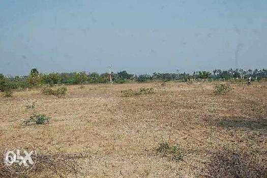 2 Acre Farm Land for Sale in Chengam, Tiruvannamalai