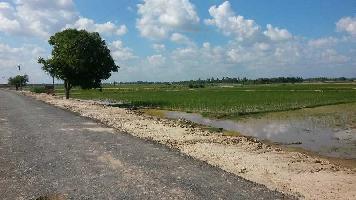 50 Acre Farm Land for Sale in Modinagar, Ghaziabad