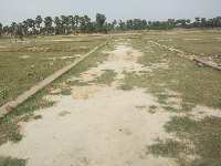 800 Sq.ft. Residential Plot for Sale in DLW Colony, Varanasi