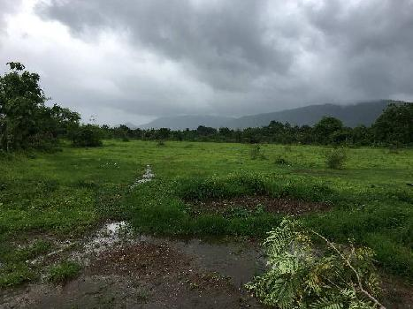 12550 Sq. Meter Industrial Land for Sale in Wada, Thane