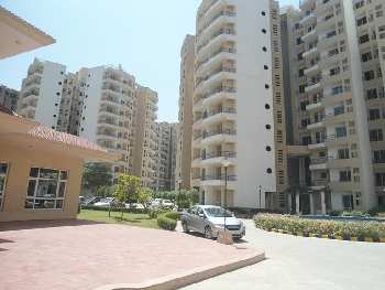 3 BHK 1765 Sq.ft. Residential Apartment for Rent in Alwar Bypass Road, Bhiwadi